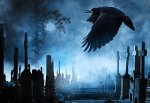 200 ворон умерли одновременно на кладбище в г. Таганроге