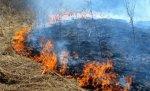 За время действия особого режима количество пожаров в Волгоградской области только возросло