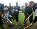 В День древонасаждения на Дону высадят десятки деревьев и кустарников