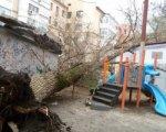 В Ростове дерево упало на детскую площадку