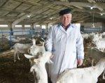 Ветеринарные врачи помогают развивать козоводство на Дону