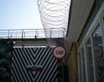 Донское ГУФСИН: по амнистии уже освобождены 115 человек