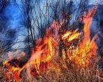 ГУ МЧС: в Ростовской области сохраняется чрезвычайная пожароопасность