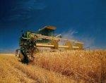 Белокалитвинским фермерам выдали субсидии
