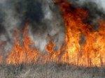 Мусор и трава в Белокалитвинском районе продолжают гореть