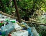 Ручей Безымянный в зоопарке Ростова очистят от мусора волонтеры