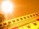 Август в Белокалитвинском районе будет рекордно жарким
