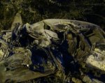 В Ростовской области в ДТП погибли три человека, двое из которых дети