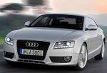 Водителя Audi избил и ограбил дальнобойщик на трассе М-4 рядом с г. Шахты