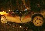 В г. Шахты разбились 2 человека, врезавшись в дерево на дороге Центр-Артем