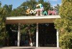 Ростовский зоопарк поднимет цены на билеты в 2 раза