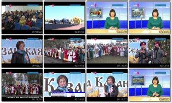 Выпуск информационной программы Белокалитвинская Панорама от 8 ноября 2016 года