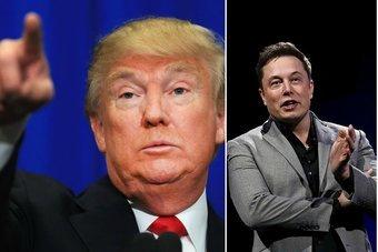 Дональд Трамп взял главу Tesla к себе в советники, несмотря на критику