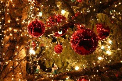 В Белокалитвинском районе проходит областная акция «Новый год в кругу семьи»