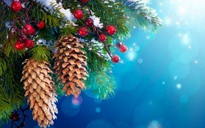 Расписание новогодних мероприятий в Белой Калитве