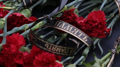 В КНДР соболезнуют в связи с крушением Тy-154