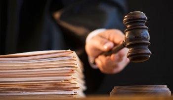Голуби, утки, кукуруза и водка довели до суда
