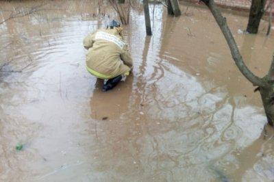 Спасатели отселили девять человек из зоны затопления в Заветинском районе