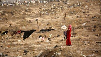 В Ираке обнаружили массовое захоронение с телами четырех тысяч человек