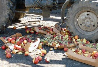 Раздавили 19 тонн свежих яблок на свалке после задержания фуры на трассе М-4 в Ростовской области