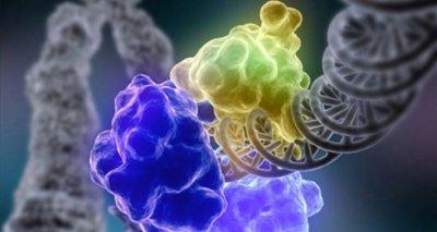 Наночастицы из мочевины и лимонной кислоты помогут в борьбе с опасными заболеваниями