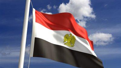 Египет приветствует планы сотрудничества с российскими регионами