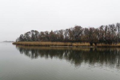 Ростовчанин предложил построить новый мост на Зеленый остров
