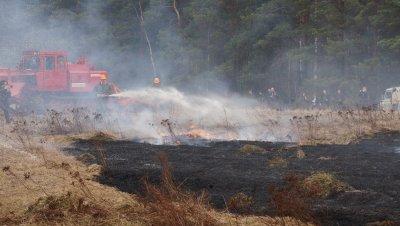 Выжигание сухой травы - проблема