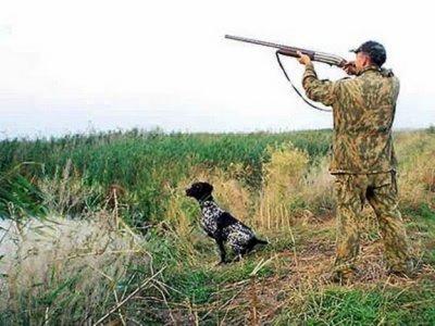 Весенняя охота запрещена в Белой Калитве