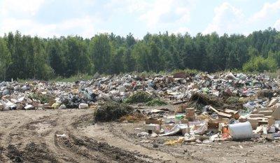 В посёлке Сосны ликвидировали 5 свалок