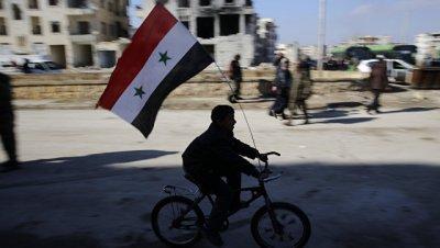В коалиции не комментируют идею о создании зон деэскалации в Сирии