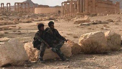 Сирийская армия взяла под контроль четыре позиции восточнее Пальмиры