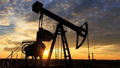 Цена на нефть марки Brent впервые за полгода опустилась ниже $49