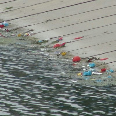Фестиваль фонариков превратил реку Темерник в красочную помойку