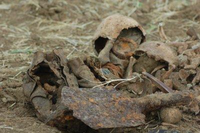 Поисковики ищут советский самолет, упавший под Ростовом во время ВОВ