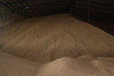 Непроданного зерна на Дону осталось на 20% больше, чем в прошлом году