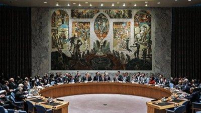 СБ ООН в ближайшее время обсудит новый доклад ОЗХО по атаке в Хан-Шейхуне