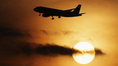 В Индии авиарейс задержали из-за атаки роя пчел на самолет