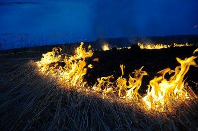 На территории белокалитвинского района на этих выходных возникло несколько пожаров