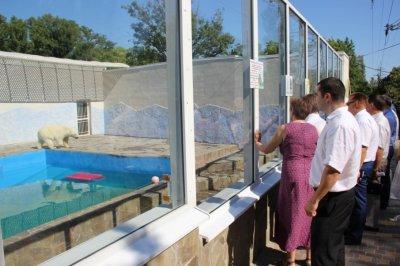 Благоустройство ростовского зоопарка обошлось в 239 млн рублей