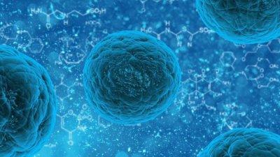 Найден способ «перепрограммировать» клетки для лечения заболеваний