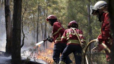 Власти Португалии обратились к ЕС за помощью в тушении пожаров