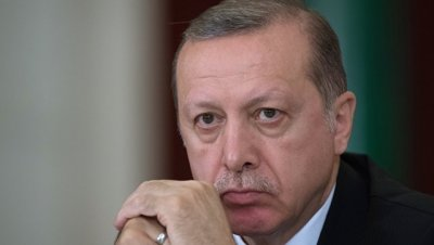 Эрдоган посоветовал главе МИД Германии
