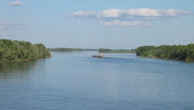 На юге Москвы пьяная женщина едва не утонула в пруду
