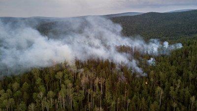 МЧС доставит 100 человек в Ростовскую область для тушения пожаров