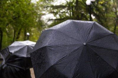 В начале следующей недели синоптики обещают небольшие дожди