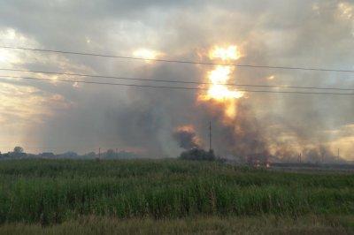 В Ростовской области во время пожара местные жители ветками отогнали огонь от электростанции