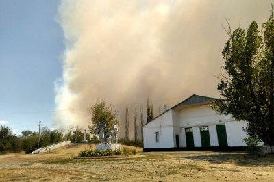 В Усть-Донецком районе огонь прошел почти 5 тысяч гектаров леса