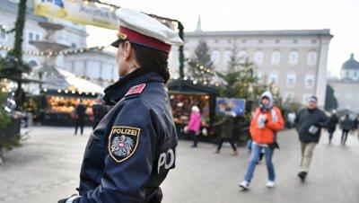В Австрии после погони задержали пьяного водителя фуры из России