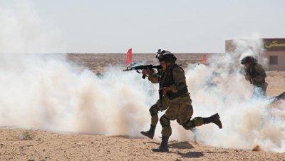 Египетские десантники прибыли в Россию на совместные учения
